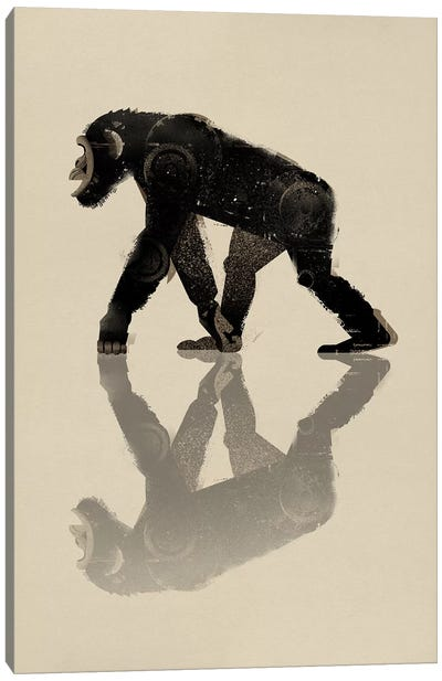 Chimp Canvas Print #DBR1