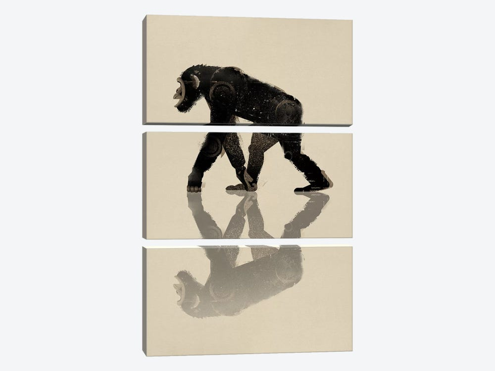 Chimp by Dieter Braun 3-piece Art Print