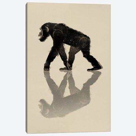 Chimp Canvas Print #DBR1} by Dieter Braun Canvas Print