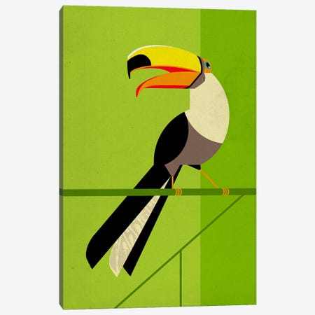 Tucan Canvas Print #DBR20} by Dieter Braun Canvas Art