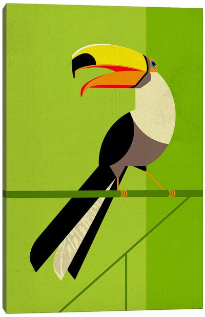 Tucan Canvas Art Print