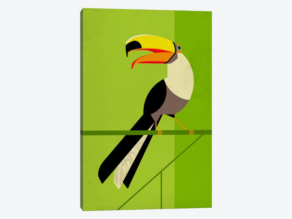 Tucan by Dieter Braun 1-piece Canvas Art Print