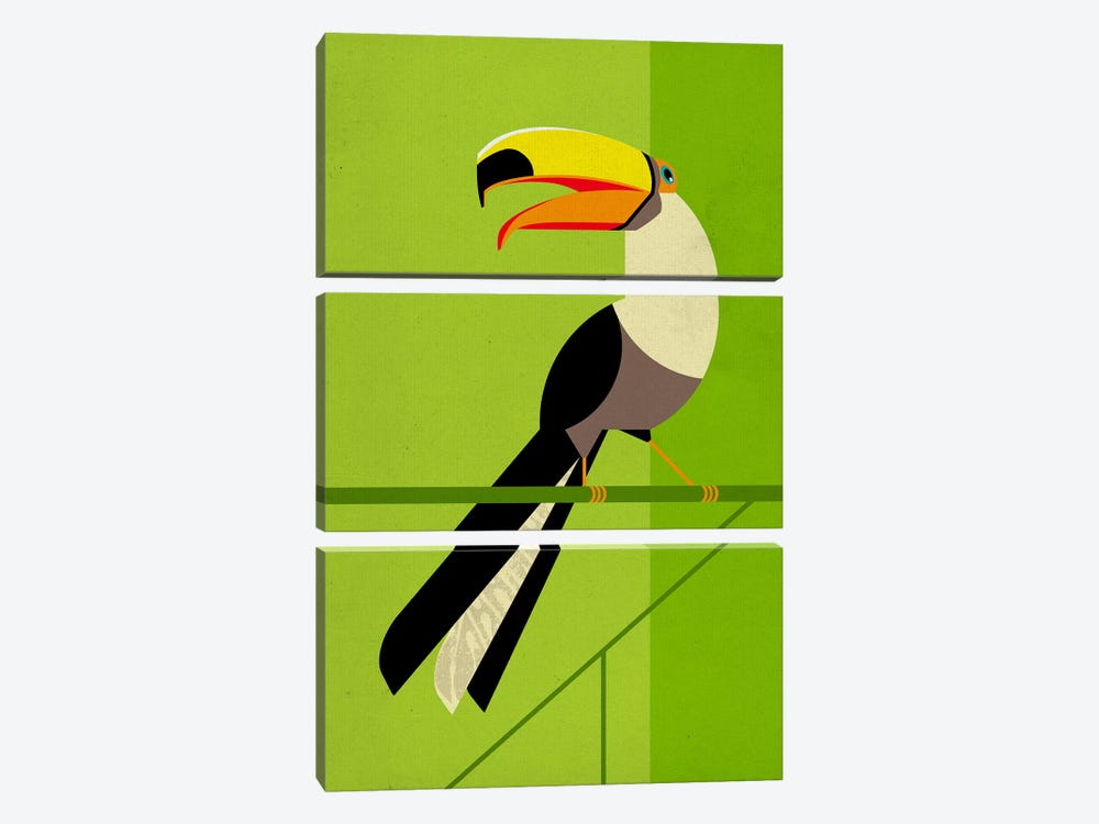 Tucan by Dieter Braun 3-piece Canvas Print