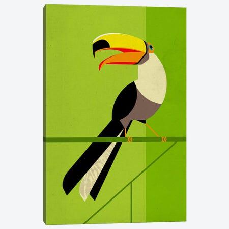 Tucan Canvas Print #DBR20} by Dieter Braun Canvas Art