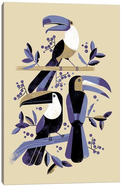 Tucans Canvas Art Print
