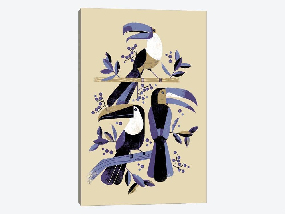 Tucans by Dieter Braun 1-piece Canvas Art