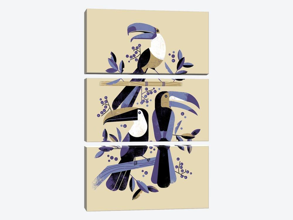 Tucans by Dieter Braun 3-piece Canvas Art