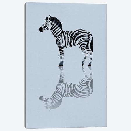 Zebra Canvas Print #DBR24} by Dieter Braun Art Print