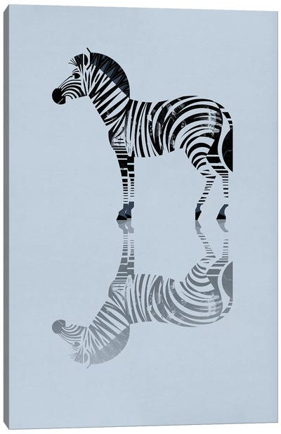 Zebra Canvas Print #DBR24