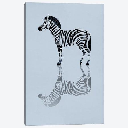 Zebra Canvas Print #DBR24} by Dieter Braun Art Print