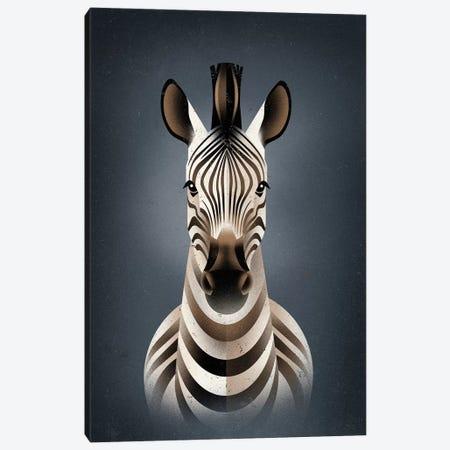 Zebra II Canvas Print #DBR25} by Dieter Braun Art Print
