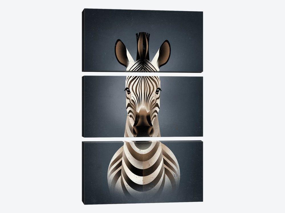 Zebra II by Dieter Braun 3-piece Canvas Artwork