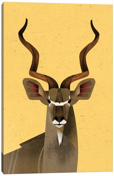 Big Kudu Canvas Art Print