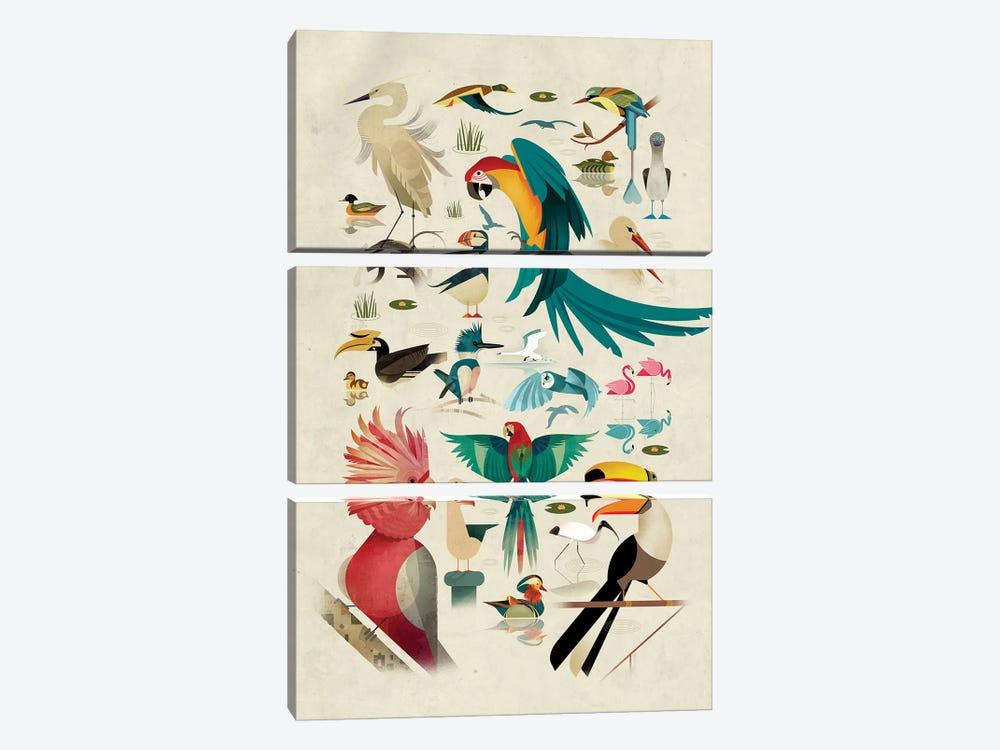 Birds by Dieter Braun 3-piece Canvas Print