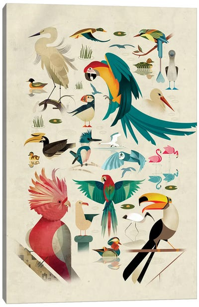 Birds Canvas Art Print