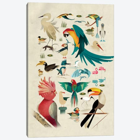 Birds Canvas Print #DBR28} by Dieter Braun Canvas Wall Art