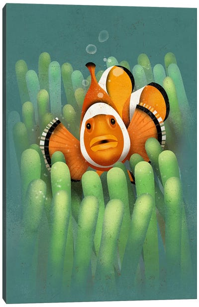 Clown Fish Canvas Art Print