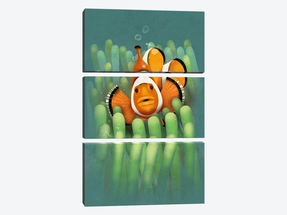 Clown Fish by Dieter Braun 3-piece Canvas Artwork