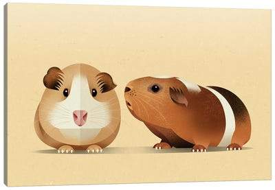 Guinea Pig Canvas Art Print