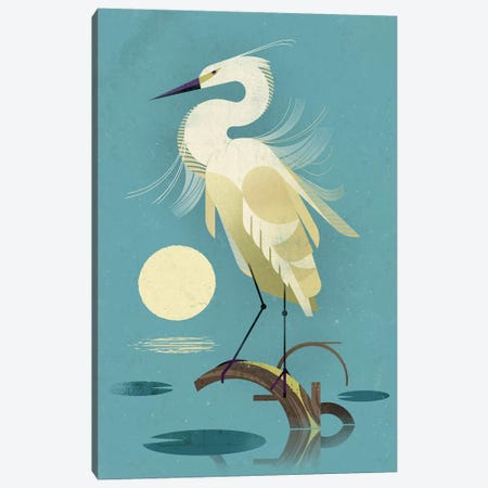 Little Egret Canvas Print #DBR33} by Dieter Braun Canvas Print