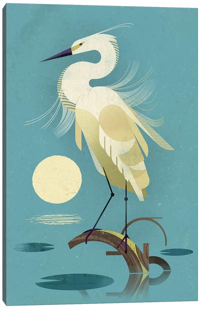 Little Egret Canvas Art Print