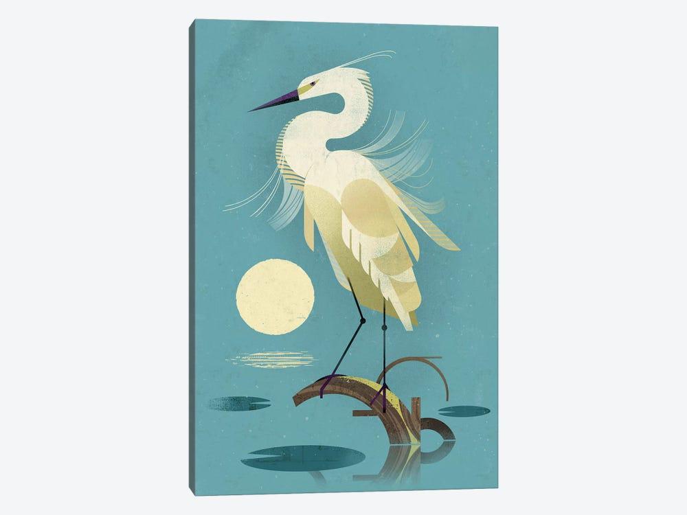 Little Egret by Dieter Braun 1-piece Canvas Art Print