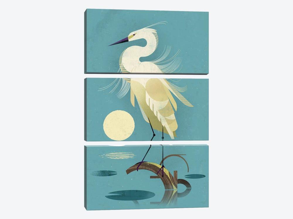 Little Egret by Dieter Braun 3-piece Canvas Print
