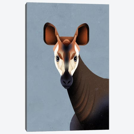 Okapi Canvas Print #DBR34} by Dieter Braun Canvas Art