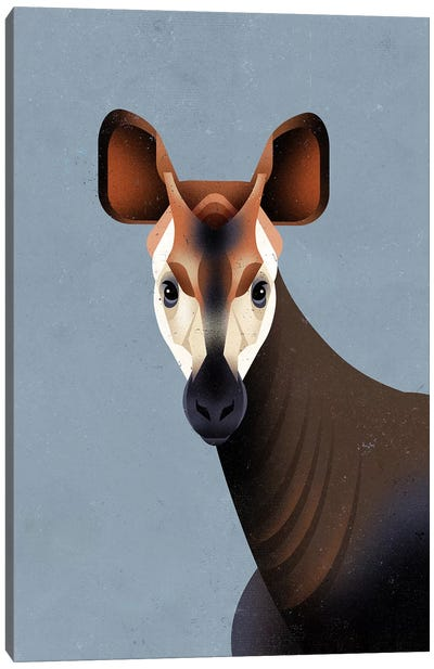 Okapi Canvas Art Print