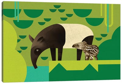 Tapir Canvas Art Print