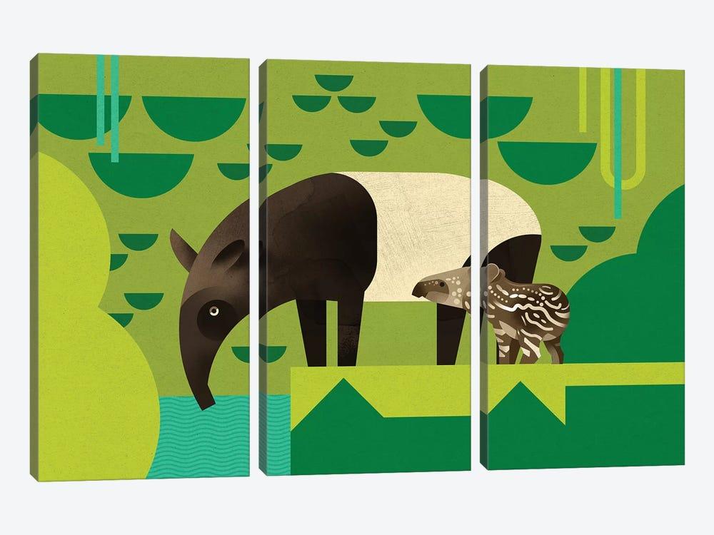 Tapir by Dieter Braun 3-piece Canvas Art Print