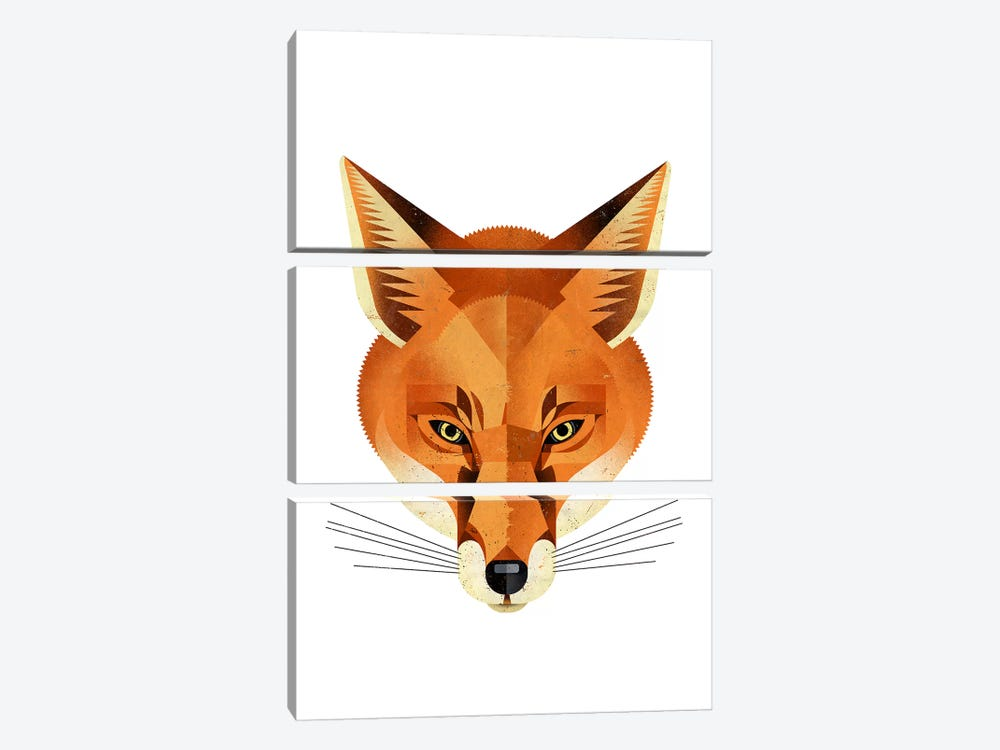 Fox by Dieter Braun 3-piece Canvas Art