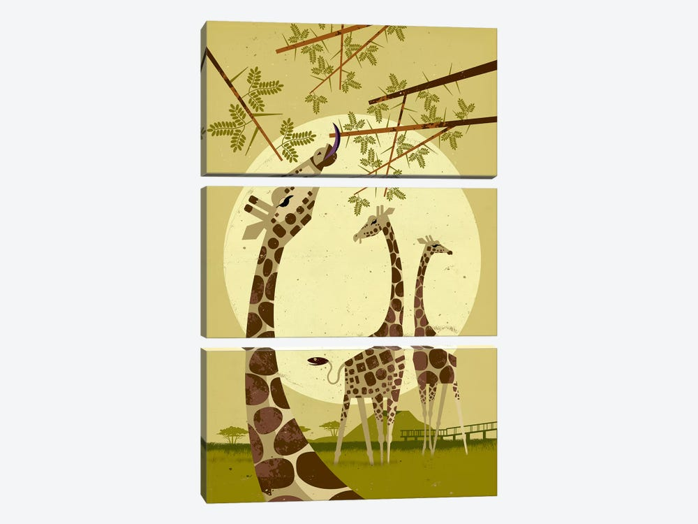 Giraffes by Dieter Braun 3-piece Canvas Art Print