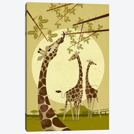 Giraffes Canvas Print #DBR5} by Dieter Braun Canvas Wall Art