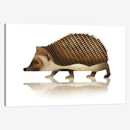 Hedgehog Canvas Print #DBR7} by Dieter Braun Canvas Artwork