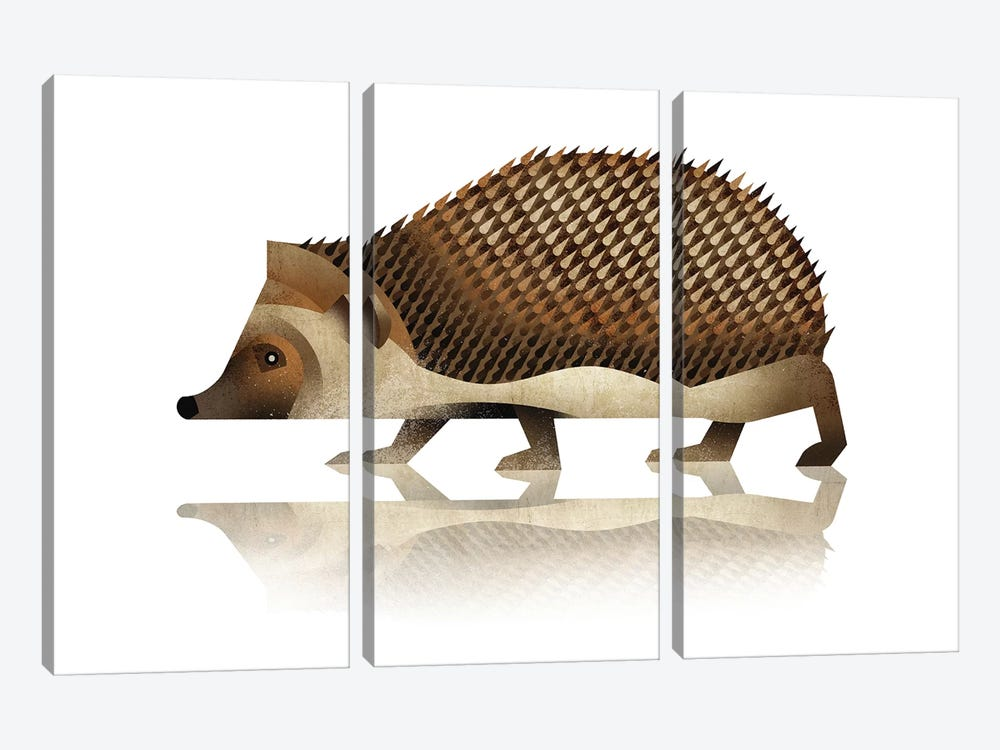 Hedgehog by Dieter Braun 3-piece Canvas Print