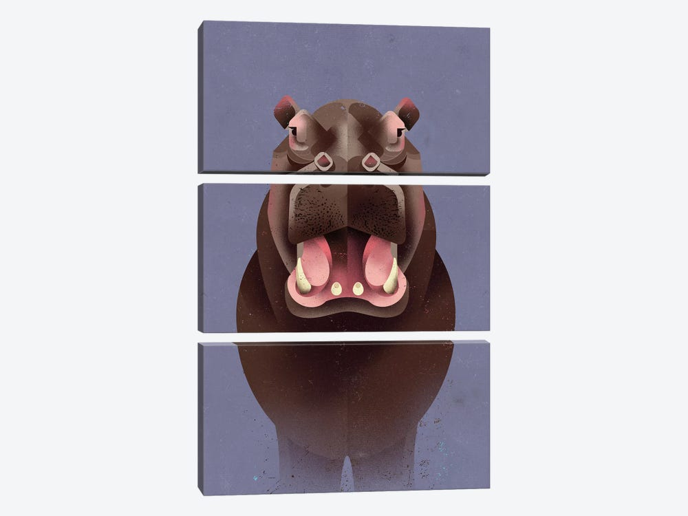 Hippo 3-piece Canvas Wall Art