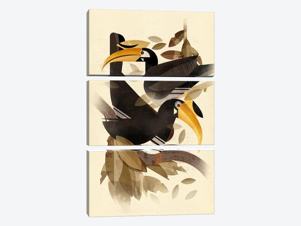 Hornbills by Dieter Braun 3-piece Canvas Print