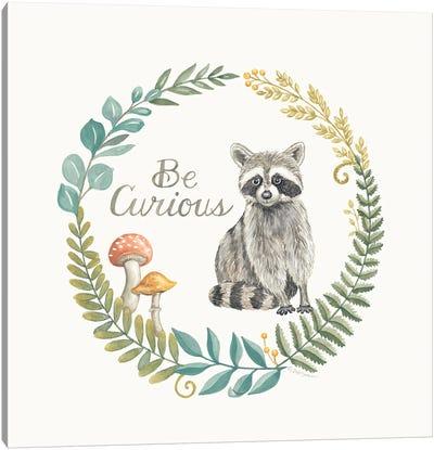 Be Curious Raccoon Canvas Art Print