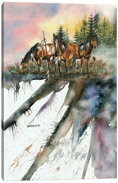 No Horse Stolen Today Canvas Art Print