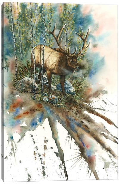 On A String Canvas Art Print