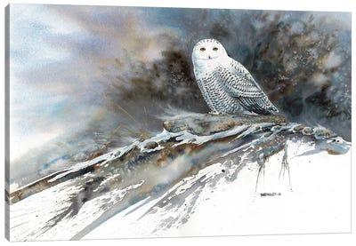 Arctic Ghost Canvas Art Print