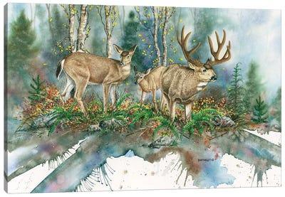 Blacktails Canvas Art Print