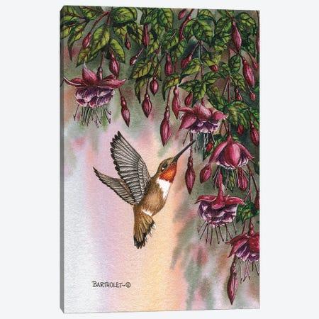 Fuchsias Canvas Print #DBT46} by Dave Bartholet Canvas Print