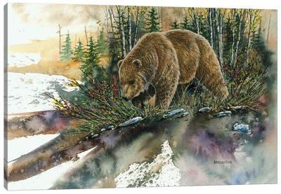 Huckleberry Grizz Canvas Art Print
