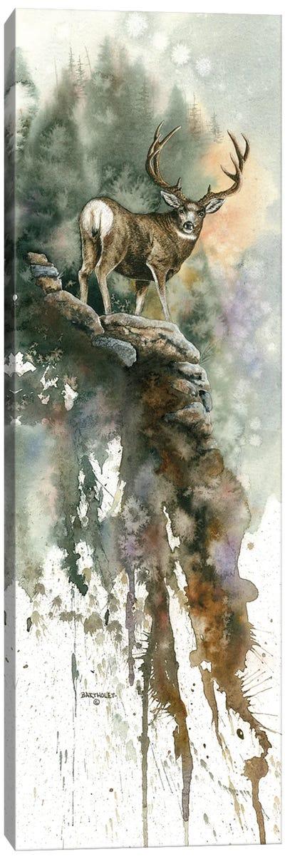 Last Light Muley Canvas Art Print