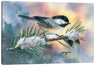 Little Flitter Canvas Art Print