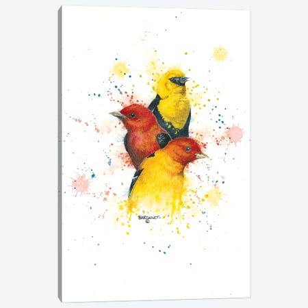 Songbird Trio II Canvas Print #DBT66} by Dave Bartholet Art Print
