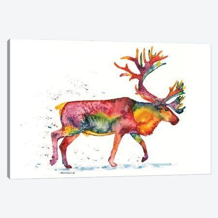Rainbow Caribou Canvas Print #DBT6} by Dave Bartholet Canvas Wall Art
