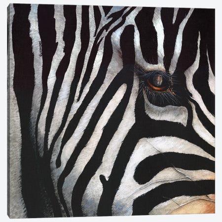 Zebra Canvas Print #DBT83} by Dave Bartholet Canvas Art